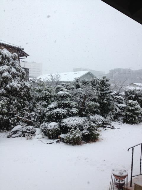 湘南も大雪!
