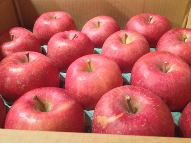 りんごの季節始まる