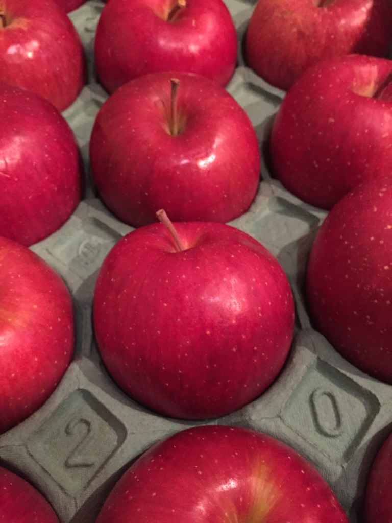 りんごの季節だ!